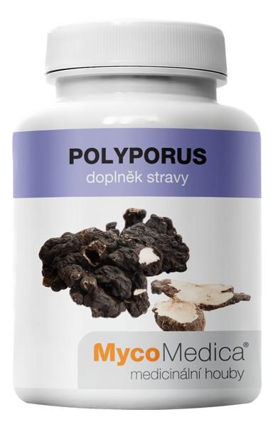 Polyporus extrakt (90 kapslí)